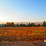San Bernardino Mountains Beyond the Field