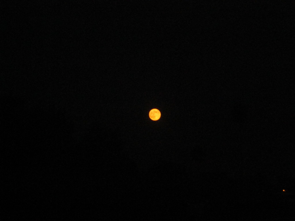 Supermoon In The Sky