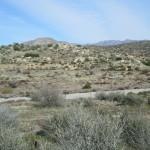 Hiking In The San Bernardino Mountain